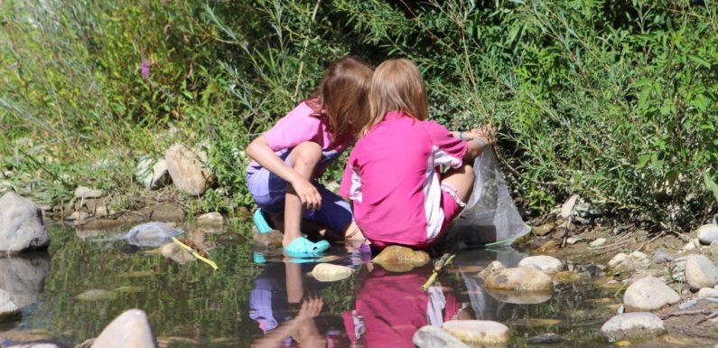 Camping La Grand» Terre : pour des séjours nature tout confort en Ardèche