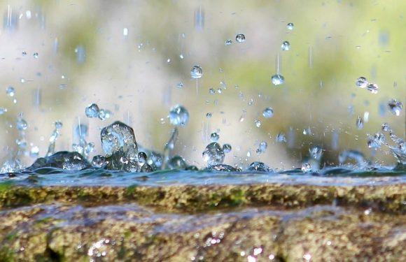 Avec la pompe de relevage pour eaux usées, évacuez les eaux pluviales en toute simplicité